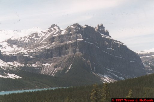 U.S.A.~Canada 599 ~ Alberta 100 ~ From Lake Louise To Athabasca Glacier 13 ~ Hector Lake 2