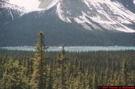 U.S.A.~Canada 601 ~ Alberta 102 ~ From Lake Louise To Athabasca Glacier 15 ~ Hector Lake 4