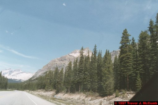 U.S.A.~Canada 605 ~ Alberta 106 ~ From Lake Louise To Athabasca Glacier 19