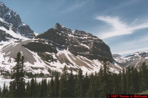U.S.A.~Canada 614 ~ Alberta 115 ~ From Lake Louise To Athabasca Glacier 28 ~ Bow Lake 03