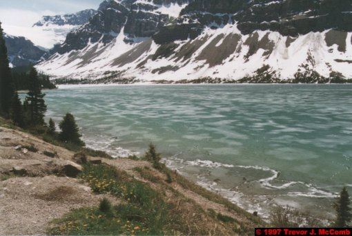 U.S.A.~Canada 622 ~ Alberta 123 ~ From Lake Louise To Athabasca Glacier 36 ~ Bow Lake 11