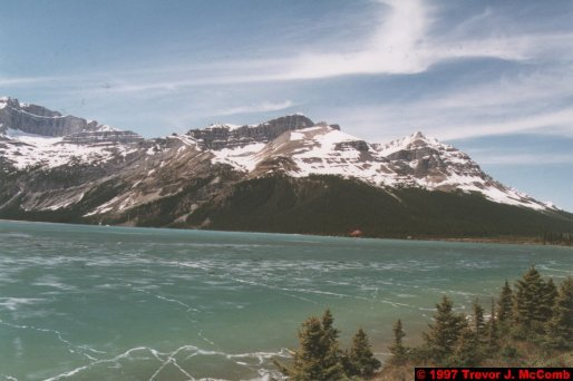U.S.A.~Canada 623 ~ Alberta 124 ~ From Lake Louise To Athabasca Glacier 37 ~ Bow Lake 12