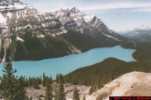 U.S.A.~Canada 632 ~ Alberta 133 ~ From Lake Louise To Athabasca Glacier 46 ~ Peyto Lake 01