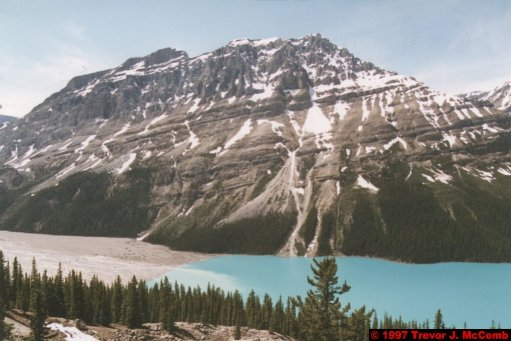 U.S.A.~Canada 633 ~ Alberta 134 ~ From Lake Louise To Athabasca Glacier 47 ~ Peyto Lake 02