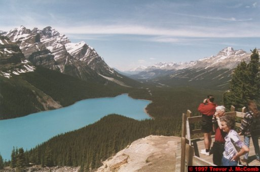 U.S.A.~Canada 634 ~ Alberta 135 ~ From Lake Louise To Athabasca Glacier 48 ~ Peyto Lake 03