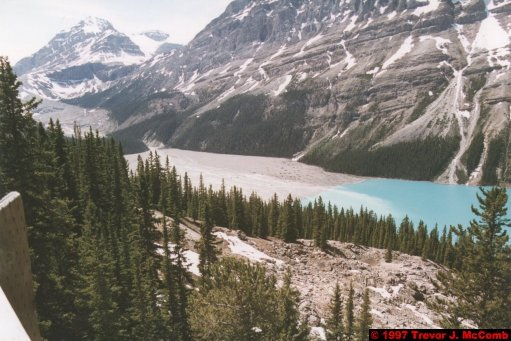 U.S.A.~Canada 635 ~ Alberta 136 ~ From Lake Louise To Athabasca Glacier 49 ~ Peyto Lake 04