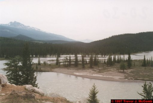 U.S.A.~Canada 728 ~ Alberta 229 ~ Jasper 07 ~ Hotel (07) Tekarra Lodge 07 ~ Meeting Of Athabasca And Miette Rivers 6