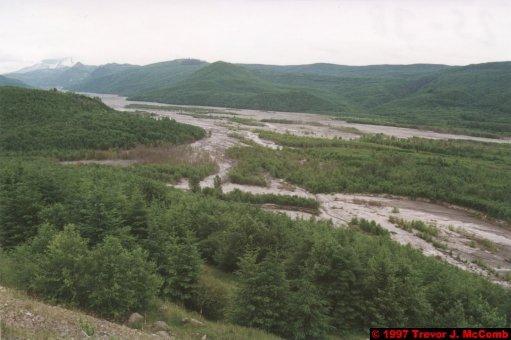 U.S.A.~Canada 921 ~ Washington 31 ~ Mount St. Helens 08 ~ Mud Flow 07