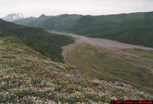 U.S.A.~Canada 929 ~ Washington 39 ~ Mount St. Helens 16 ~ Mud Flow 14