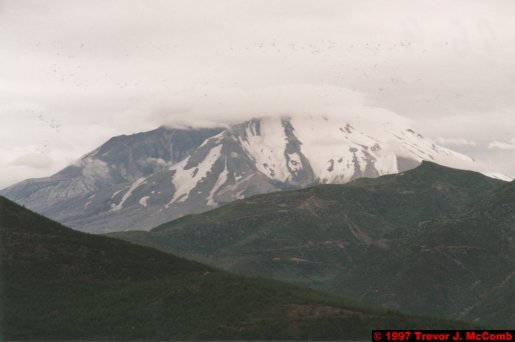 U.S.A.~Canada 930 ~ Washington 40 ~ Mount St. Helens 17 ~ Volcano 02