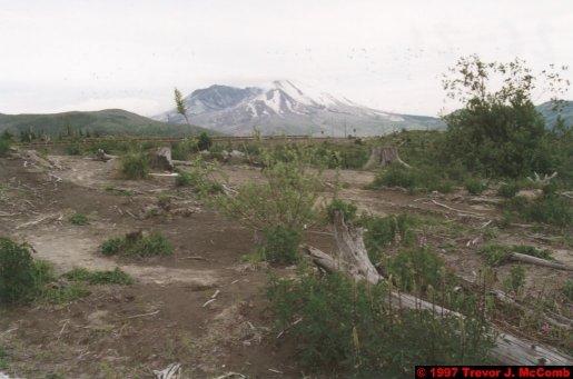 U.S.A.~Canada 942 ~ Washington 52 ~ Mount St. Helens 29 ~ Volcano 11