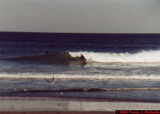 Canada~U.S.A. 349 ~ Maine 56 ~ York Beach 16 ~ Surfers 8