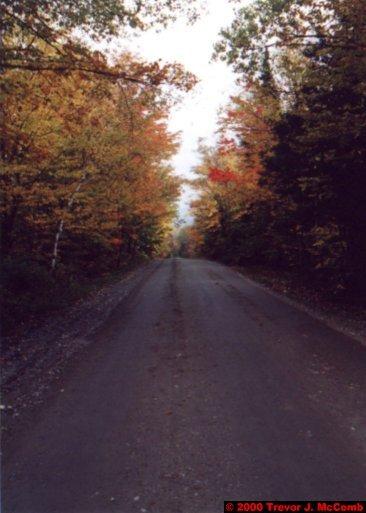 Canada~U.S.A. 451 ~ Vermont 110