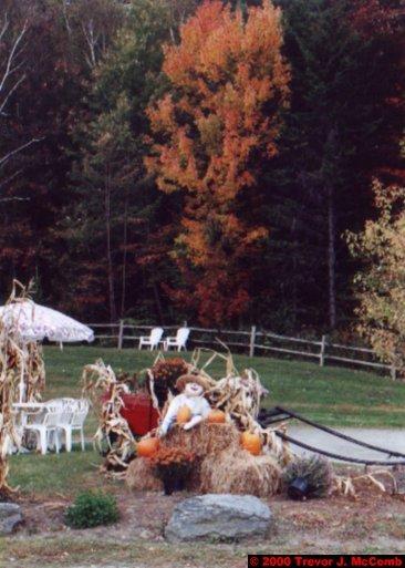 Canada~U.S.A. 470 ~ Vermont 129 ~ Halloween Display 1