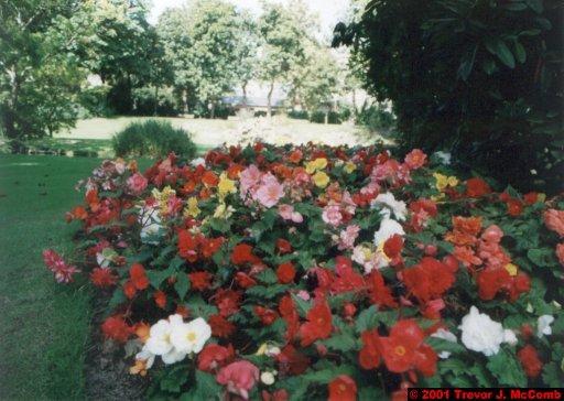 France 172 ~ Pays-de-la-Loire 091 ~ Nantes 12 ~ Jardin des Plantes 6