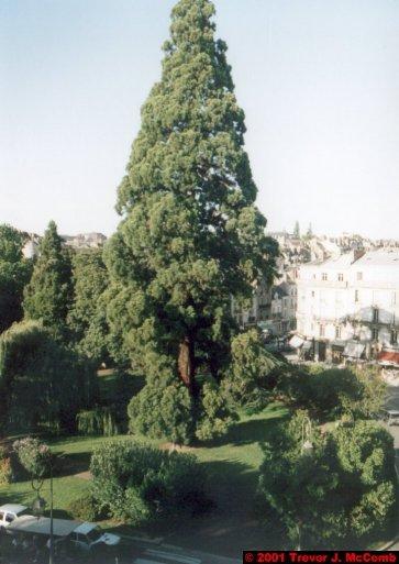 France 395 ~ Centre 158 ~ Blois 36 ~ Place Victor Hugo 1