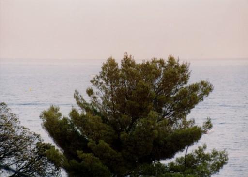 France 009 ~ Provence-Alpes-Côte d'Azur 001 ~ Var 001 ~ Sainte Maxime 01 ~ Hôtel Montfleuri 01 ~ Golfe de Saint Tropez 01
